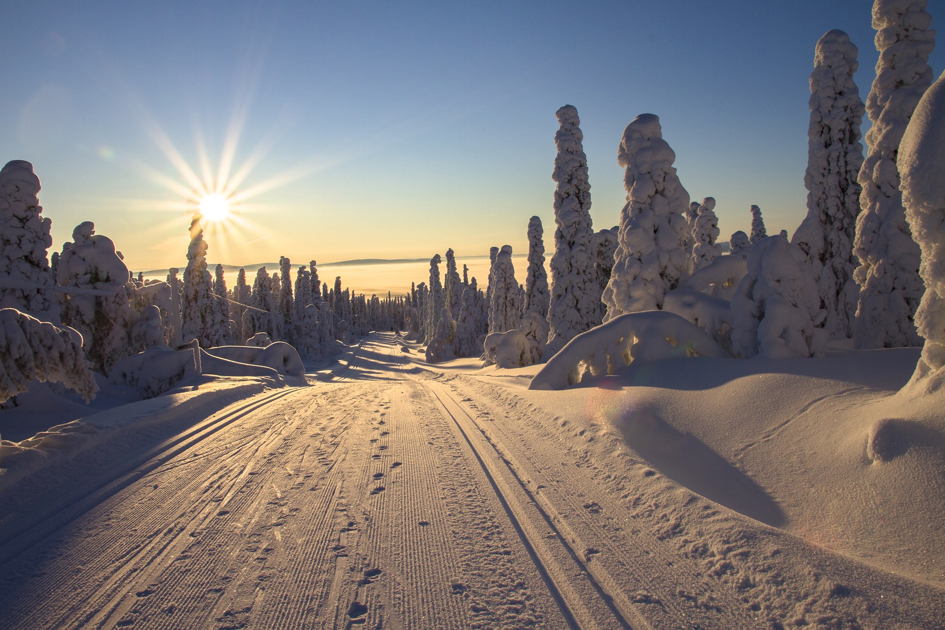 Familias en Laponia