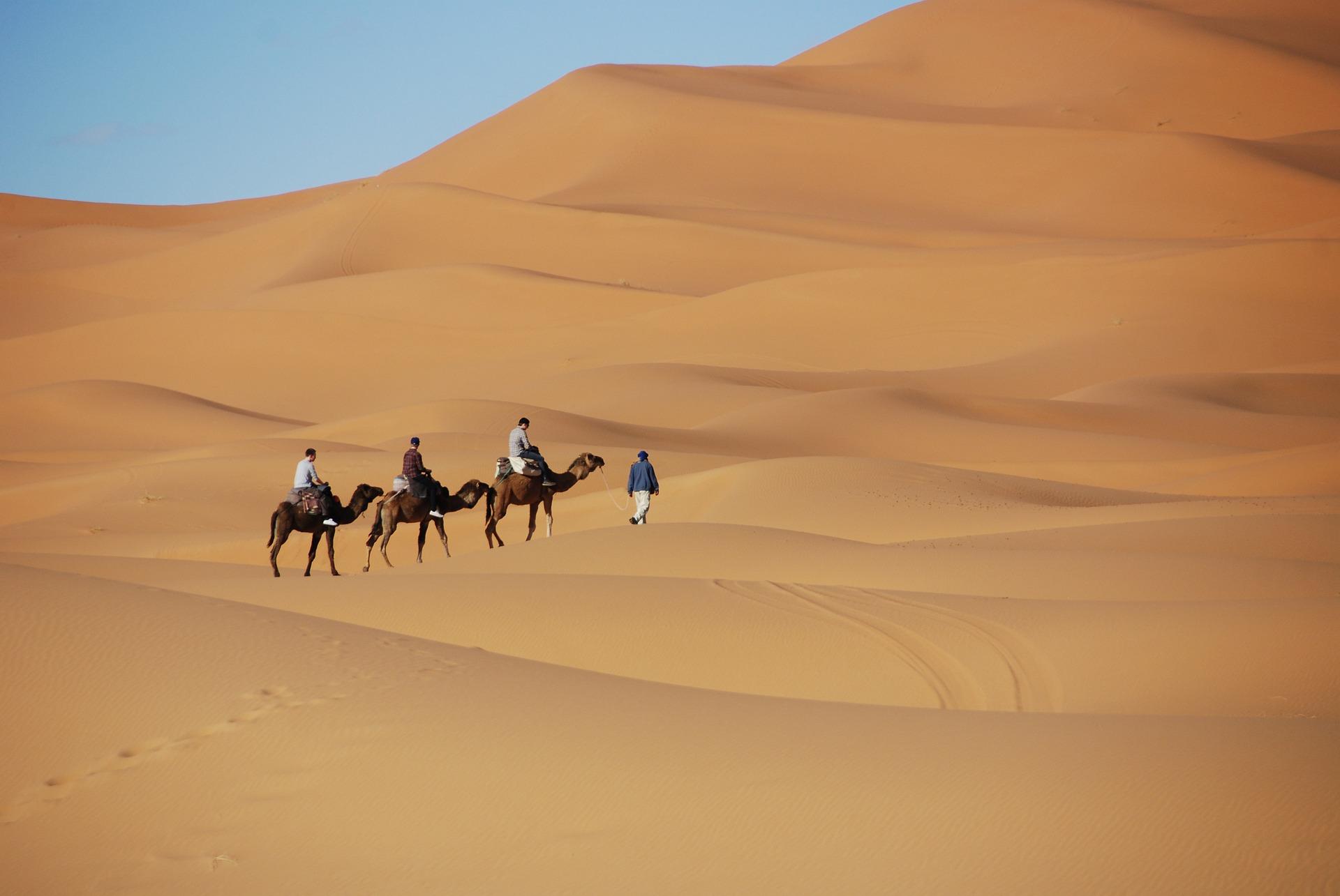 Bereberes y Tuareg