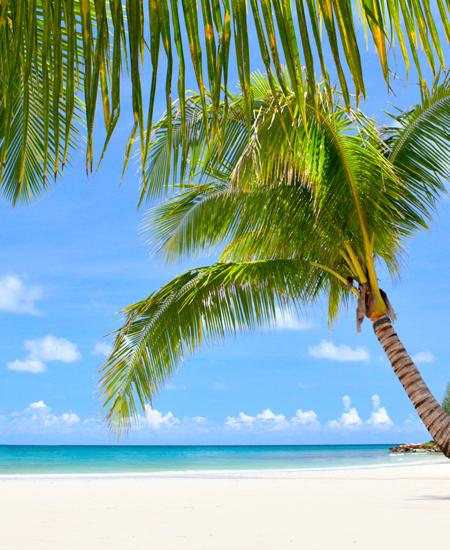 Estancias en Playa Bavaro (Salida 18 Dic. - 8 Noches) Jolidey