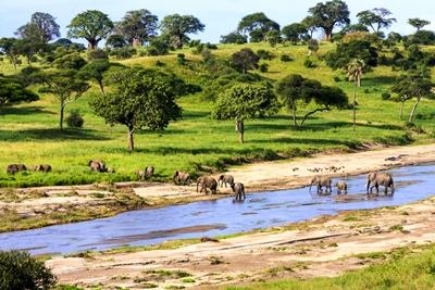 Siguiendo los pasos de Livingstone (Kenia y Tanzania 7 noches)
