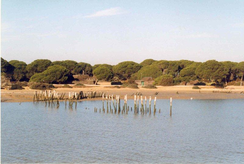 Parque Nacional de Doñana, Minas de Riotinto y Grutas Maravillas